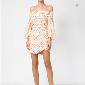 Zimmermann Runway Polka Dot Dress